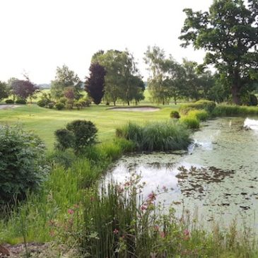 Junior to win a place in the Farmfoods British Par 3 Pro-Am